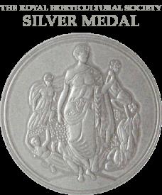 rhs-silver_03-228x275