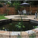 north london koi carp pond