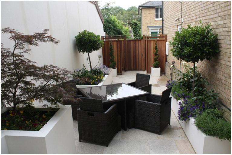 tiny chic courtyard garden