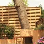 Blackheath Deck Garden