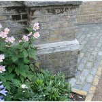 London front garden