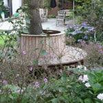 Planting around tree seat