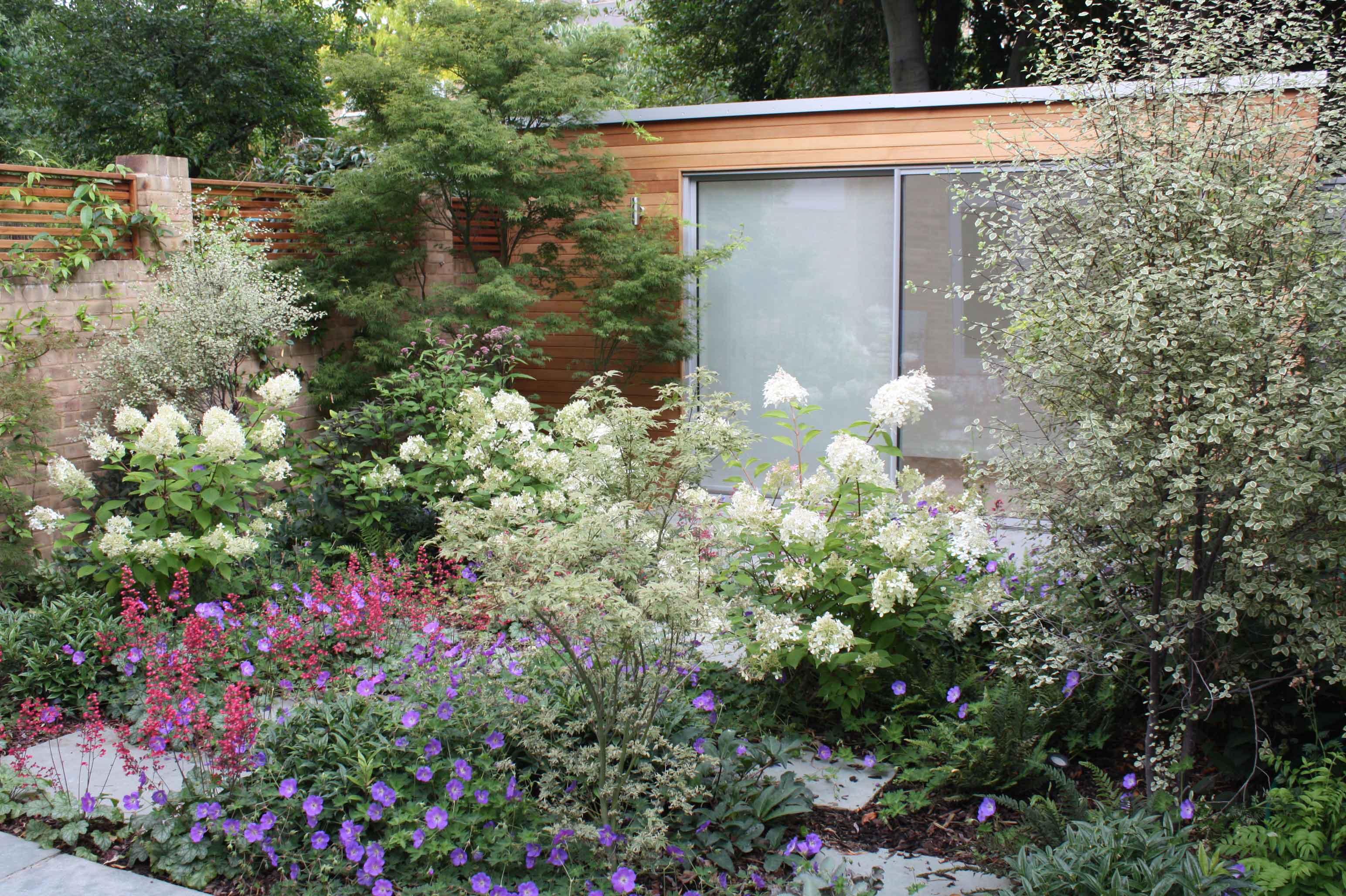 Artists studio garden