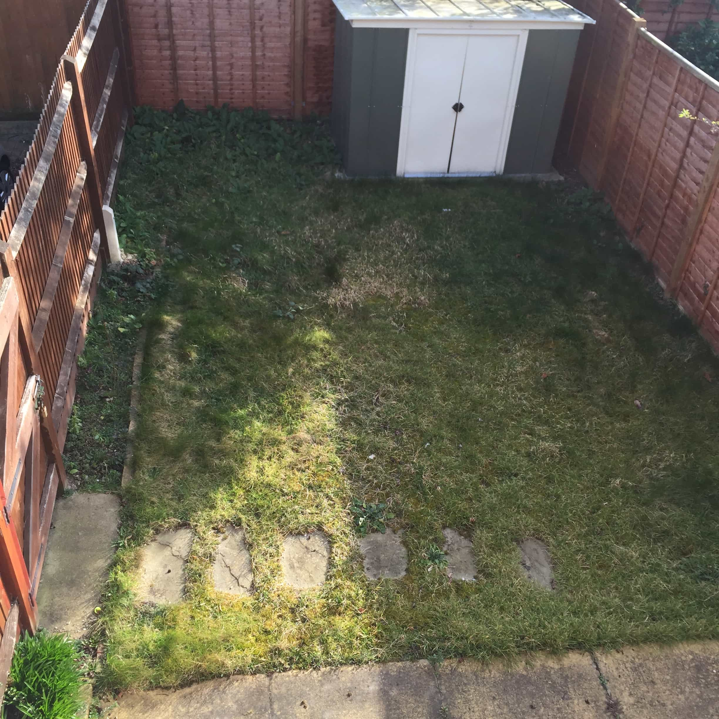 peckham garden before garden design